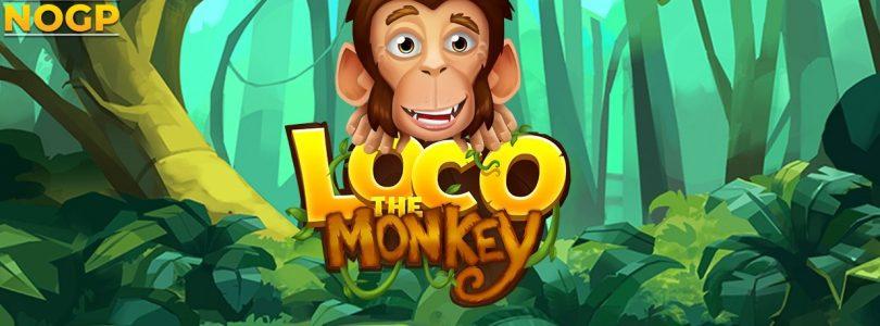 Loco the Monkey video slot