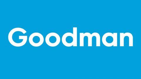 Goodman Casino: $/€500 (or 3 Bitcoin) + 150 free spins